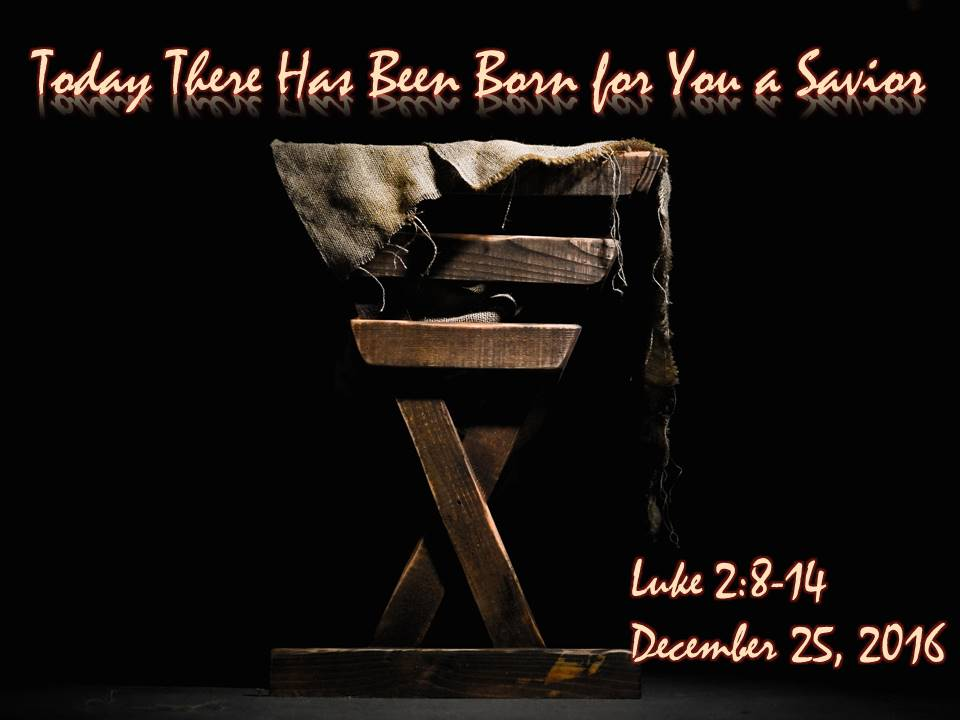 Today There Has Been Born for You a Savior