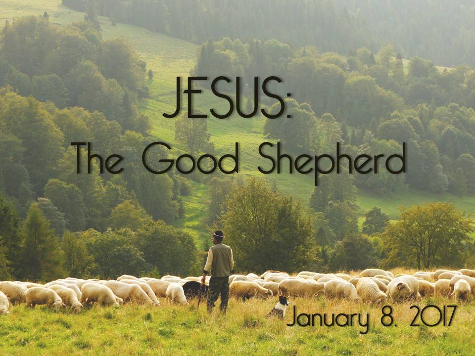 Jesus – The Good Shepherd