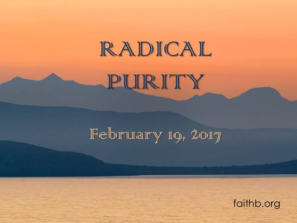 Radical Purity